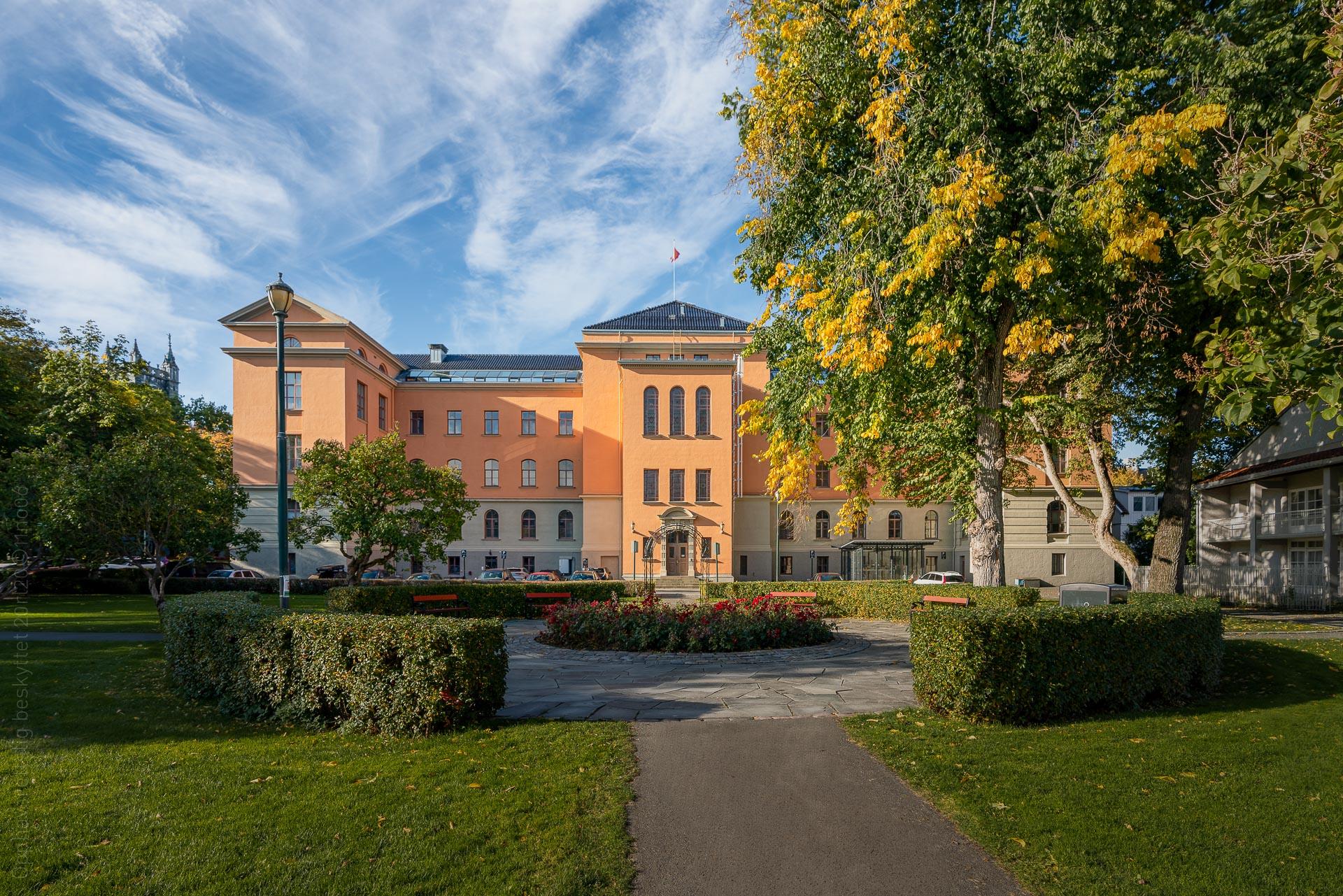 Rådhusparken i Trondheim